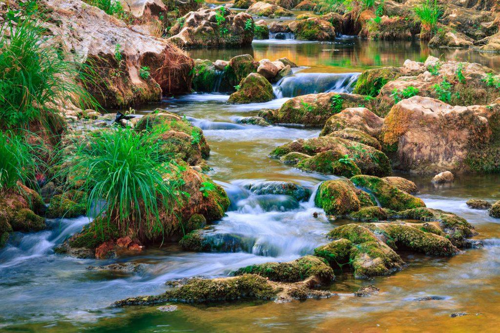 Ripalka spring